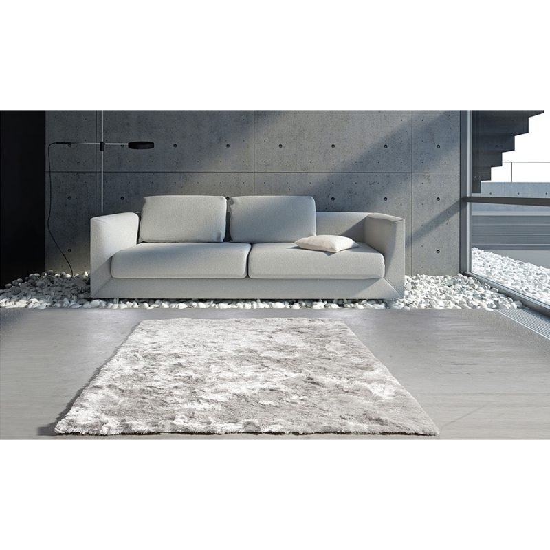 tapis salon gris clair maison design. Black Bedroom Furniture Sets. Home Design Ideas